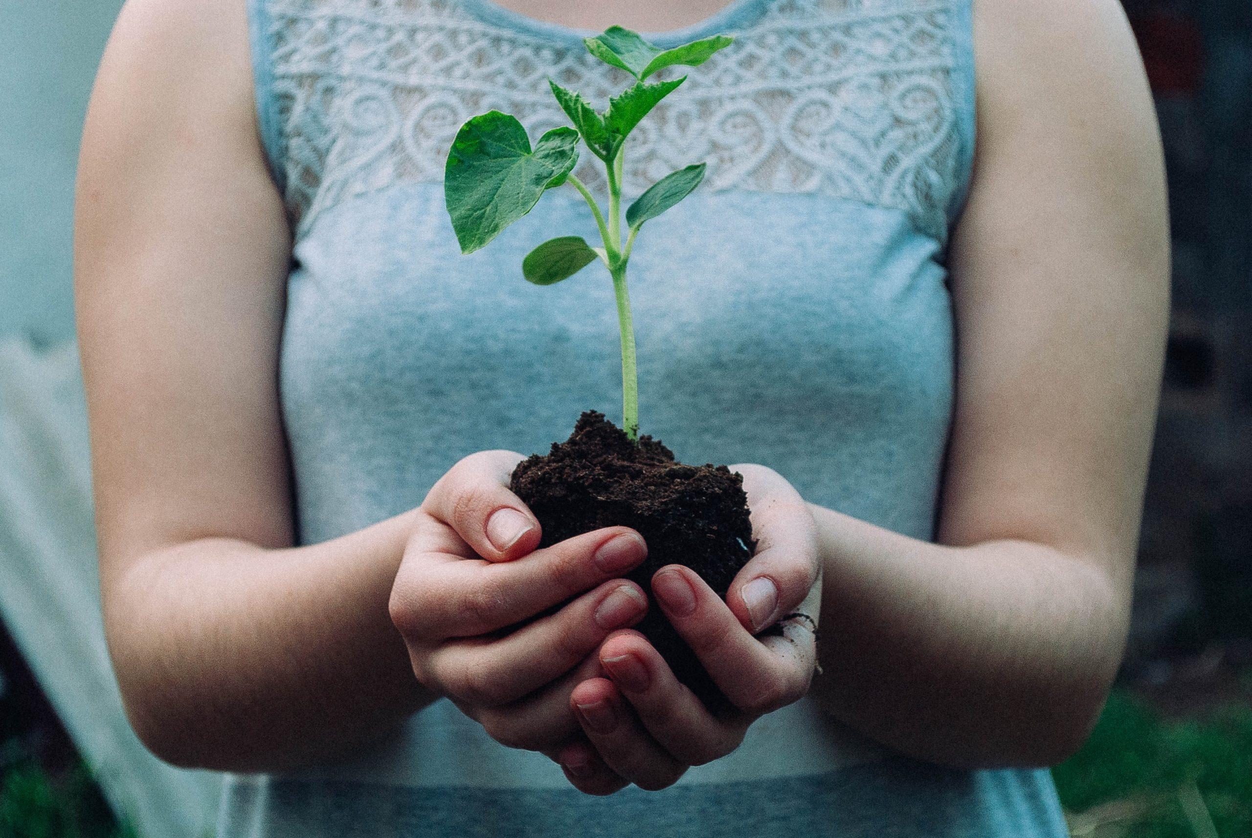 Ma foi : le fondement de mon engagement envers l'environnement